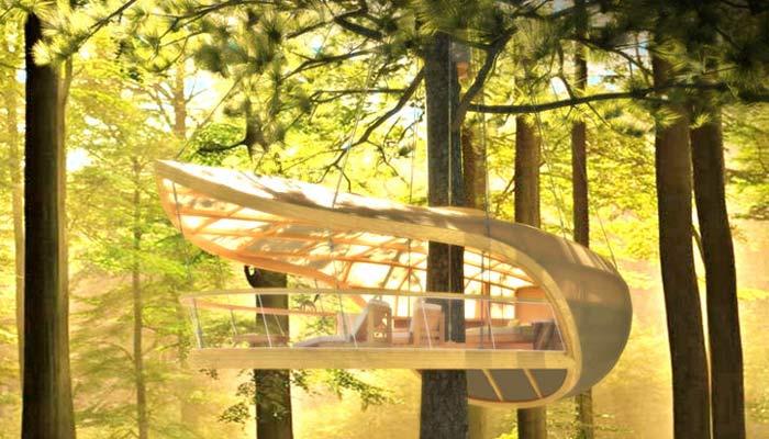 casa albero canada
