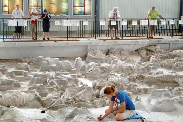 fossil bed nebraska
