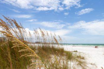 spiagge florida