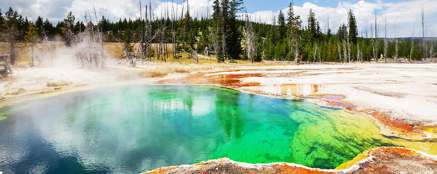 yellowstone parco