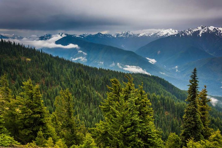 olympic national park itinerario