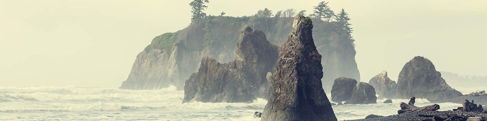 olympic national park cosa vedere