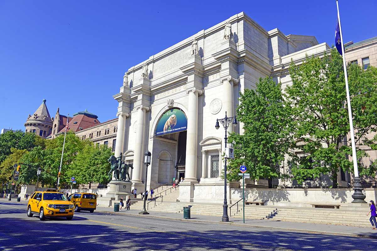 musei migliori new york