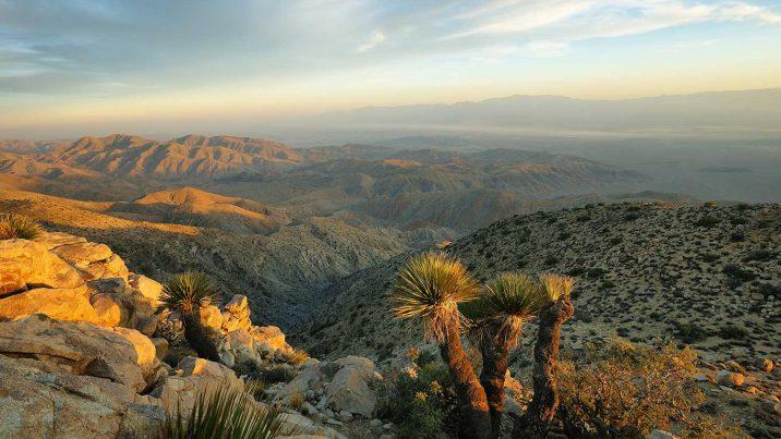 deserto mojave california